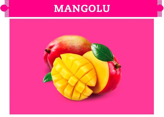 L 'era Fresca Mangolu Dondurma